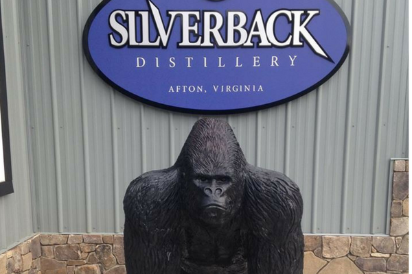 silverback sign and gorilla